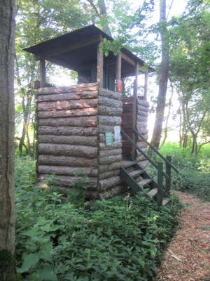 Composting toilets, woodland