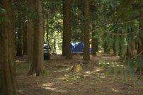 HIdden camps!