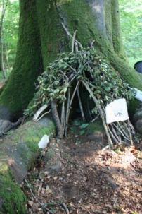 Perfect Fairy House tree roots.
