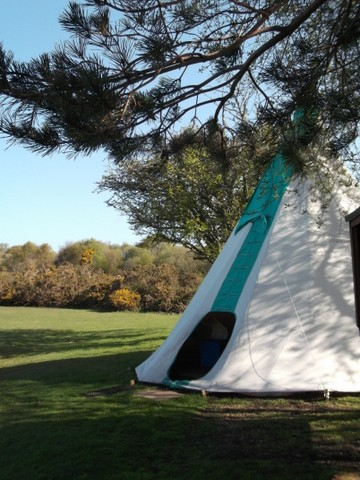Longthorns Campsite